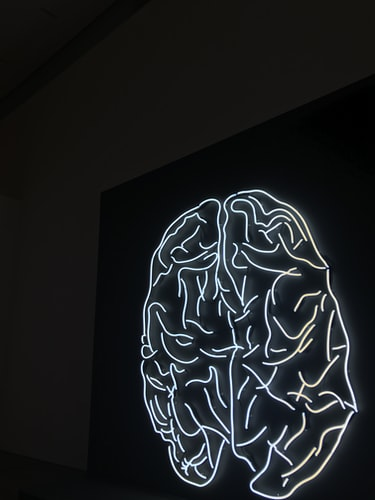 rankbrain in neon light