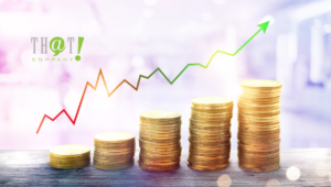 SEO Investment Importance