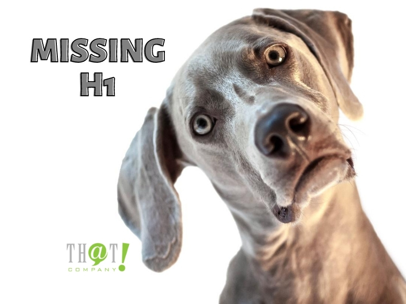 A MISSING H1 IS A BAD SEO CAMPAIGN ELEMENT