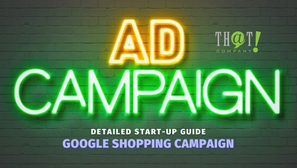 Google Shopping Ad Campaign