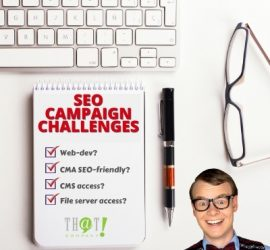 Search Engine Optimization Campaign Challenges