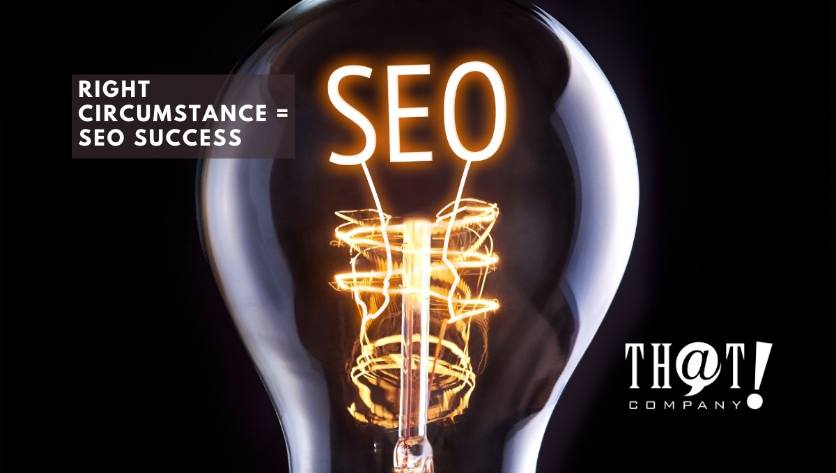 Search Engine Optimization Success | Lightbulb With SEO Lit Up