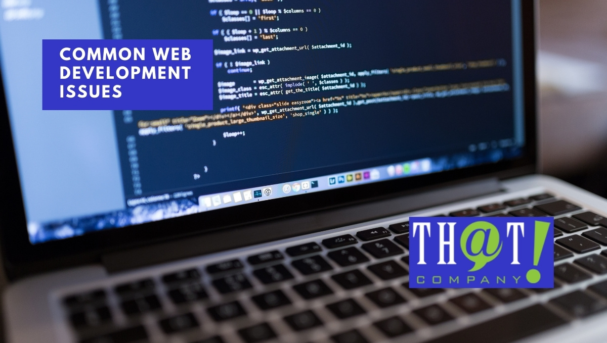 Common Web Development Issues Affecting SEO | Laptop with Code On It