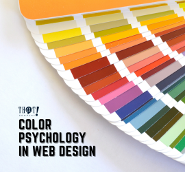Color Psychology In Web Design | Different Color Swatch